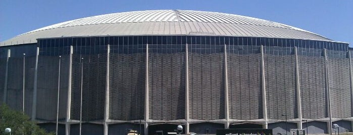 NRG Astrodome is one of Houston, We Support Local, Grow Together  #visitUS.