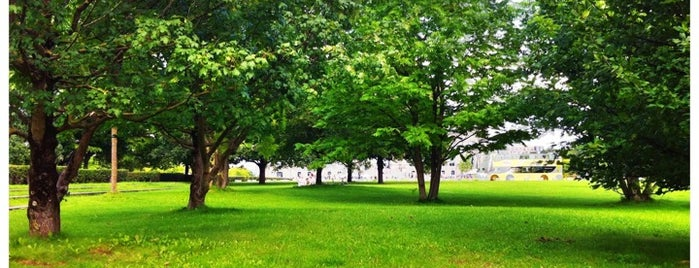 Tiergarten is one of Trips / Berlin, Germany.
