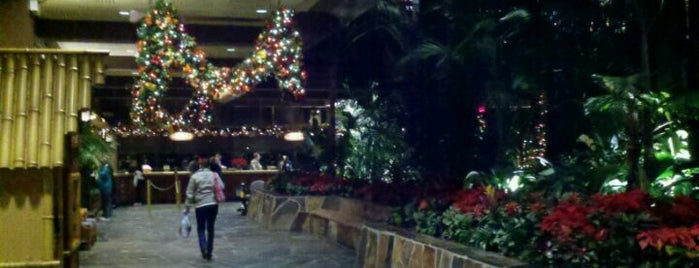 Disney's Polynesian Village Resort is one of Full day of free activity around Magic Kingdom.