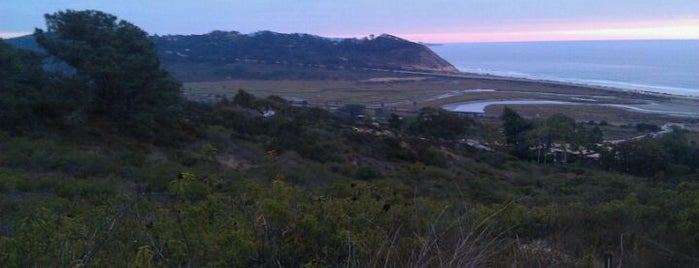 Torrey Pines State Reserve Extension is one of Hidden San Diego.