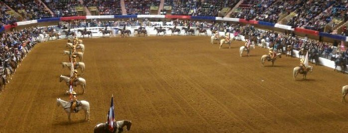 Fort Worth Stock Show & Rodeo is one of Dallas Outings.