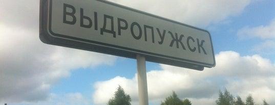 """Выдропужск is one of 10 Анекдоты из """"жизни"""" и Жизненные """"анекдоты""""!!!."""
