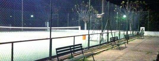 Club de Tenis Pungoles is one of Israel'in Beğendiği Mekanlar.