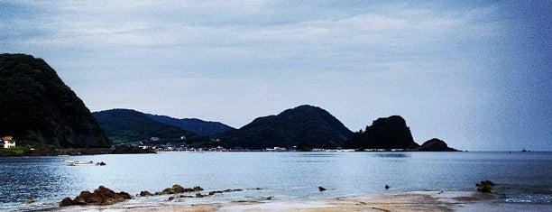 由良海水浴場 is one of 日本の渚百選.