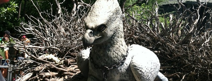 Flight of the Hippogriff is one of My vacation @ FL2.