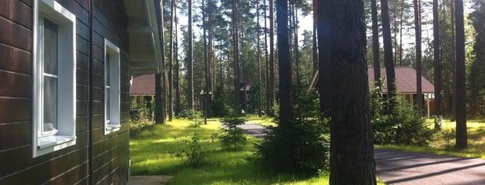 Царство-Королевство is one of Orte, die Sergei gefallen.