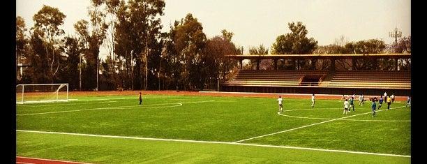 Deportivo Oceania is one of Chill 님이 좋아한 장소.