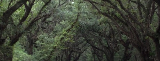 Botany Bay Plantation is one of Kimberly's Saved Places.