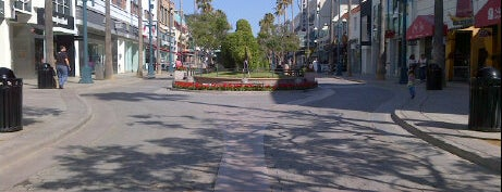 Third Street Promenade is one of Los Angeles Essentials.