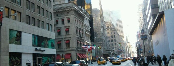 5th Avenue is one of Our Favorite NYC Spots.