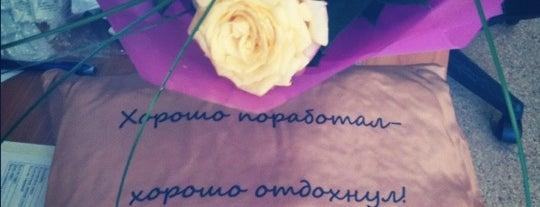 Posti che sono piaciuti a Svetlana
