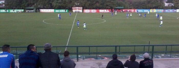 Academia de Futebol 1 (S. E. Palmeiras) is one of Locais curtidos por Will.