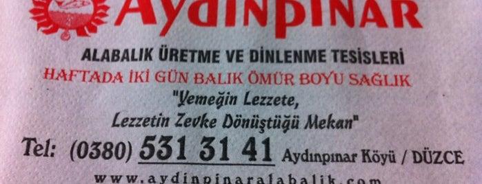 Aydınpınar Alabalık Tesisleri is one of yenilesi.