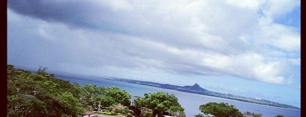 Ocean Expo Park is one of Albert : понравившиеся места.