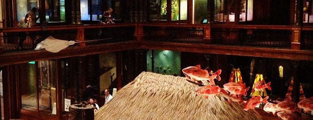 Bishop Museum is one of Oahu: The Gathering Place.