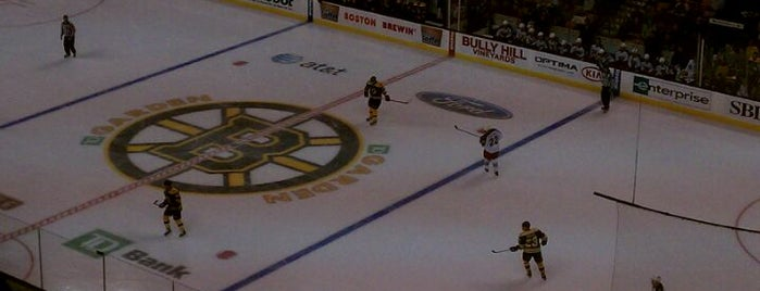 TD Garden is one of NHL HOCKEY ARENAS.