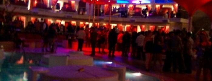 Surrender Nightclub is one of Top picks for Nightclubs.