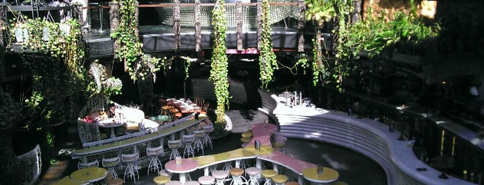 Cloudland is one of Places to visit in Brisbane.