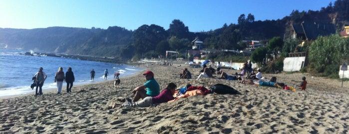 Playa Cocholgüe is one of สถานที่ที่ Luis ถูกใจ.