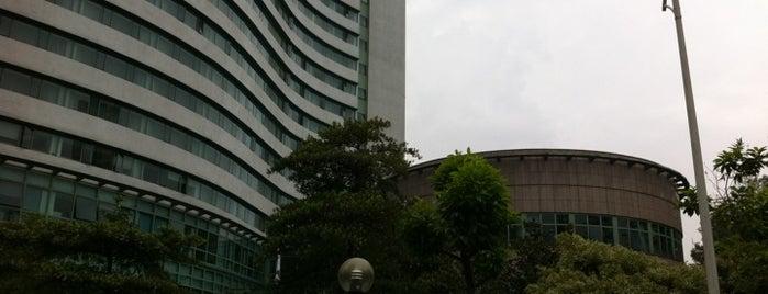 Grand Park Hotel Kunming is one of LAXgirl'in Beğendiği Mekanlar.