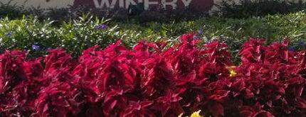 Lakeridge Winery & Vineyards is one of Orland.