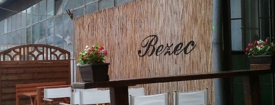 Bezec is one of สถานที่ที่ Strahinja ถูกใจ.