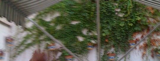 El Patio is one of Lieux qui ont plu à m.