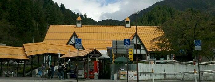 道の駅 星のふる里 ふじはし is one of 訪れた温泉施設.