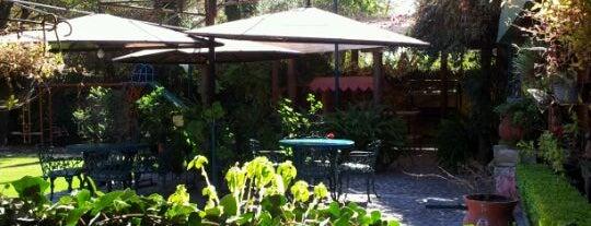 Las Margaritas is one of Alex: сохраненные места.