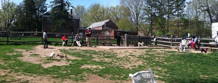 Stamford Dog Park is one of Best of Stamford, CT! #visitUS.