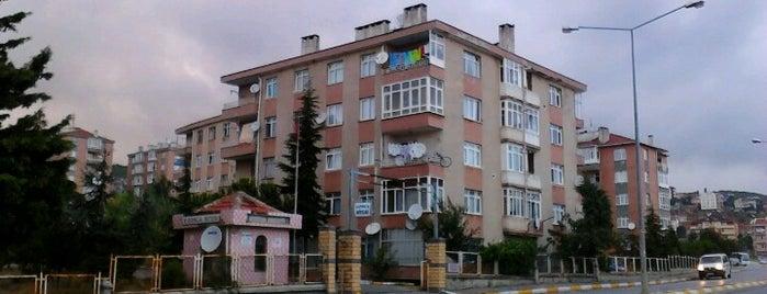 Gonca Sitesi is one of Pendik.