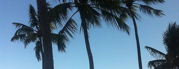 Boa Viagem is one of Locais Favoritos em Recife.