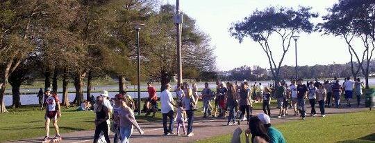 Parque Barigui is one of PELO MUNDO.....