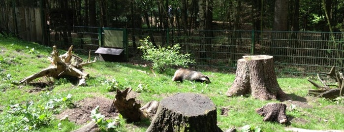 Wildpark Eekholt is one of Janaさんの保存済みスポット.