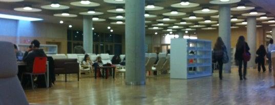 Biblioteca María Zambrano (UCM) is one of Locais curtidos por Raúl.