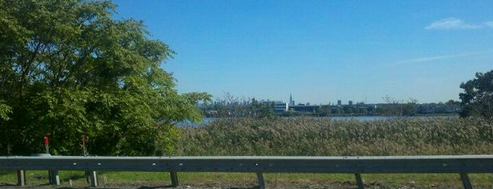 The Meadowlands is one of New York City.