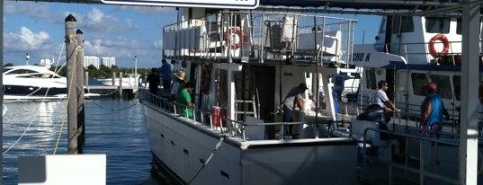 Kelley Fishing Fleet is one of Lugares favoritos de Tanya.