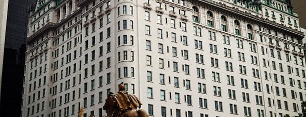 The Plaza Hotel is one of nyc.