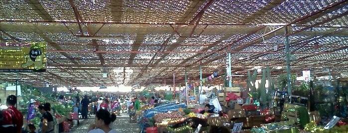 Terminal Agropecuario Arica is one of Lugares favoritos de Eka.