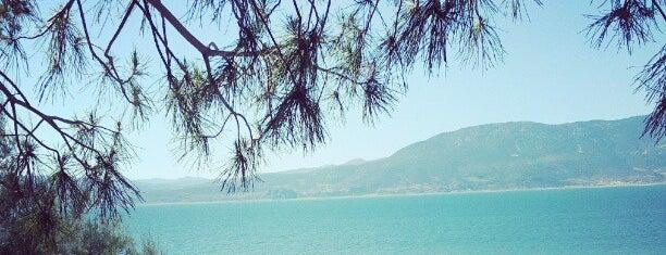 Kuş Gözlem Evi is one of Denizli & Aydın & Burdur & Isparta & Uşak & Afyon.