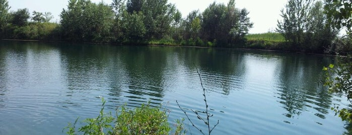 salinacko jezero 3 is one of สถานที่ที่ Tijana ถูกใจ.
