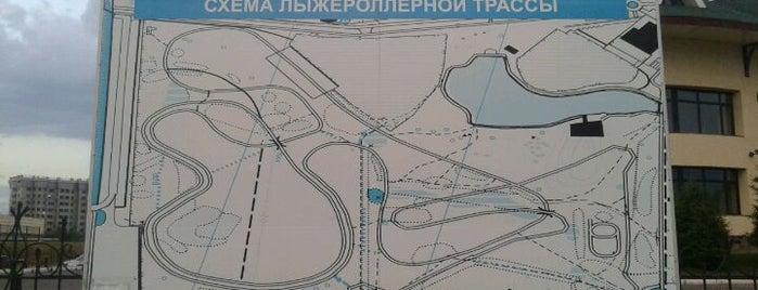 Лыжероллерная Трасса is one of Astana Great Outdoors.