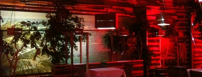 Bar & Lounge is one of Riviera Maya.