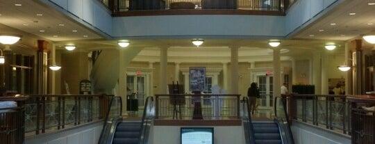 John Calhoun Baker University Center is one of Orte, die David gefallen.