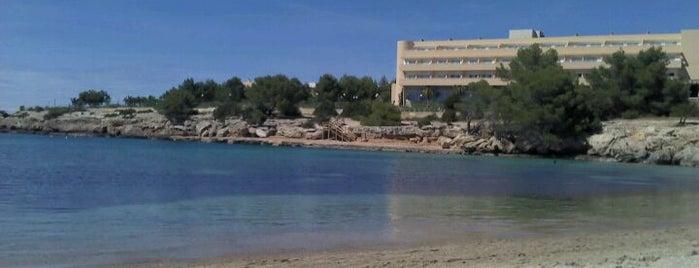 Playa Es Port d'Es Torrent is one of Orte, die Daniel gefallen.