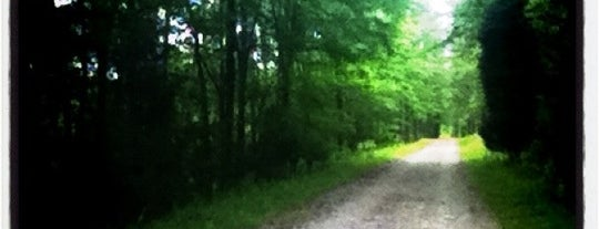 American Tobacco Trail - Scott King Rd Access is one of BEST OF DURHAM.