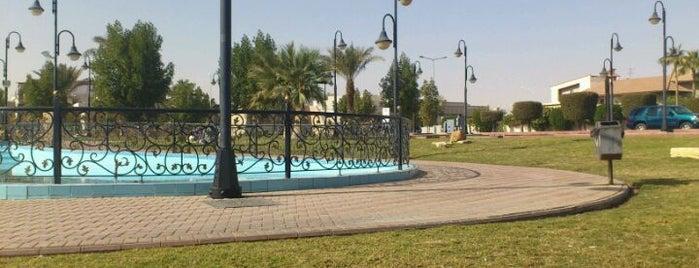 Saudi China Friendship Park is one of Lieux qui ont plu à Badr.