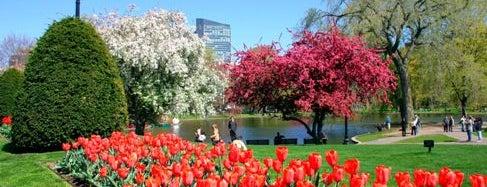 Boston Public Garden is one of Boston's Best Great Outdoors - 2012.