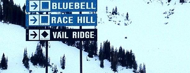 Alta Ski Area is one of Stevenson Favorite Skiing Mountains.
