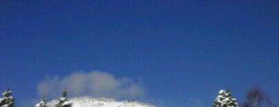 志賀高原 焼額山スキー場 is one of Best Ski Areas.